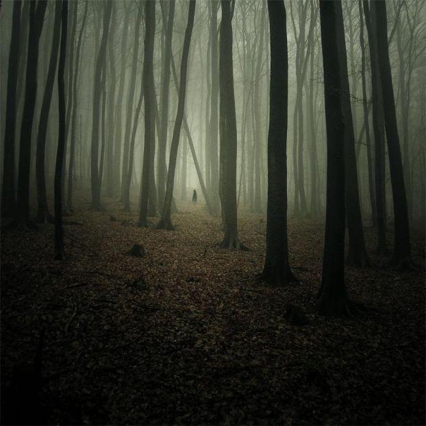 Foggy Woods / Hooded Man