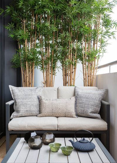 Rather than cluttering the floor space with pots, the owners have installed a neat screen of bamboo behind the sofa instead, to create a leafy privacy screen as well as adding vertical interest and colour. | Zulufish via houzz