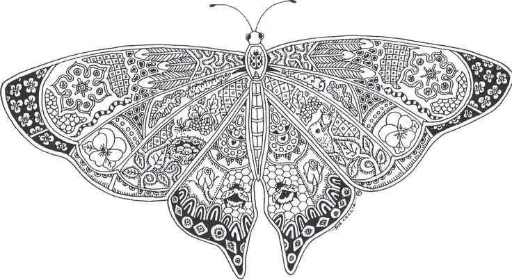 Printable Coloring Page Butterfly Coloring Pages Adult Coloring