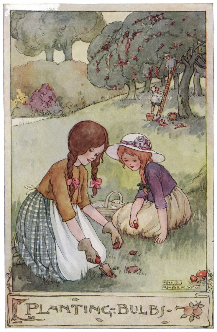 'Planting Bulbs'. Anne Anderson illustration scanned from 'The Gillyflower Garden Book', c1915.