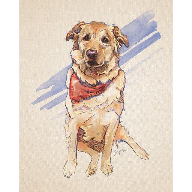 77 best dog bandana ideas images on pinterest dog bandana 77 best dog bandana ideas images on pinterest dog bandana bandana ideas and dogs ccuart Images