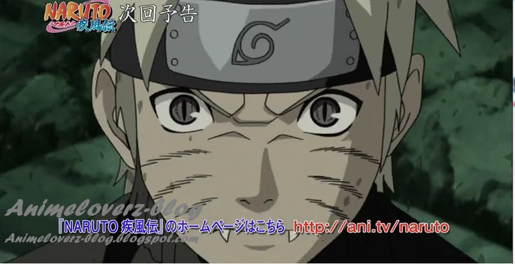 Watch Naruto Shippuden Episode 341 English Subbed