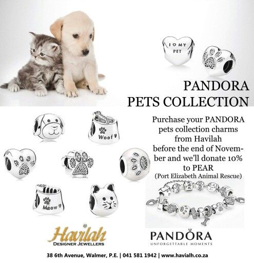 Precious pets collection available at Havilah.