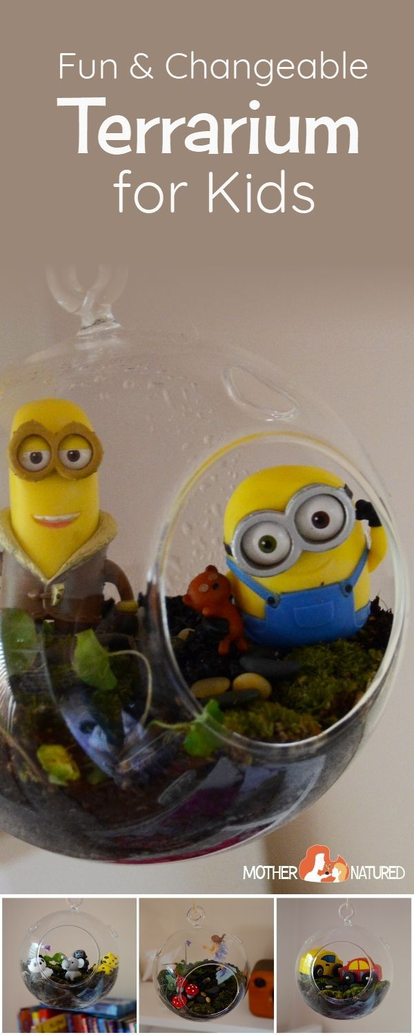 A full year-long fun and changeable terrarium for kids. #terrarium #kidsterrarium #terrariumforkids