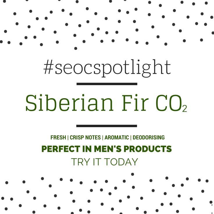 #SEOCSpotlight | Siberian Fir Australia | New Natural Ingredient | Online at www.seoc.com.au