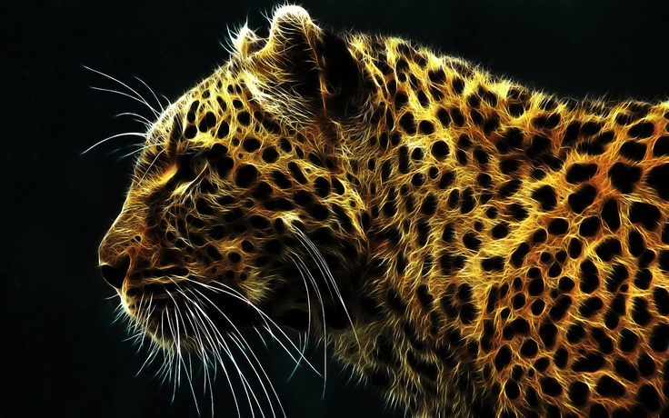 my sweet pet <3: Big Cat, Wild Cat, Cheetahs, Rainbows Colors, Art, Leopards, Wallpapers, Fractals Animal, Bright Colors