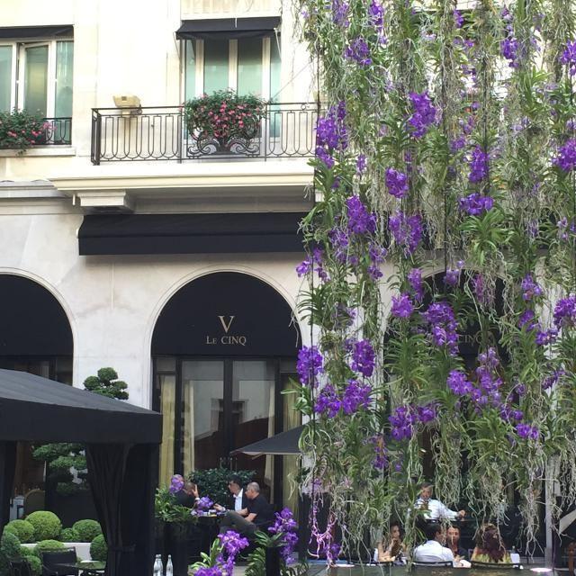 Michelin Star Dining Event: Le Cinq Paris: Le Cinq Restaurant