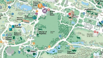 Bronx Zoo General information, zoo history, map, education program summary, animal photos and descriptions, and calendar of events. Part of The Wildlife Conservation Society.