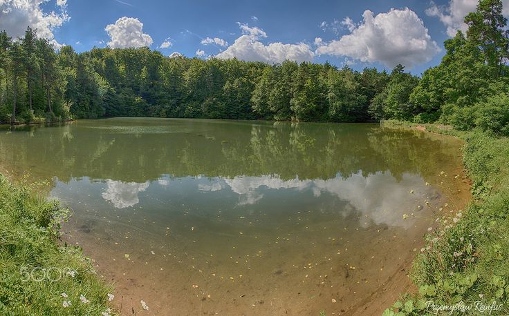 Pond in Klucze (Poland) - null