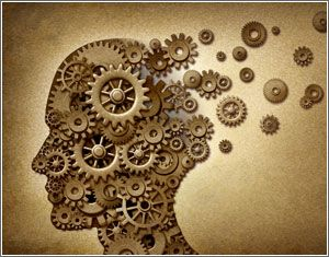 Vette350's Junior Mining Blog  : Psychology: What's Your Trading Brain Type?