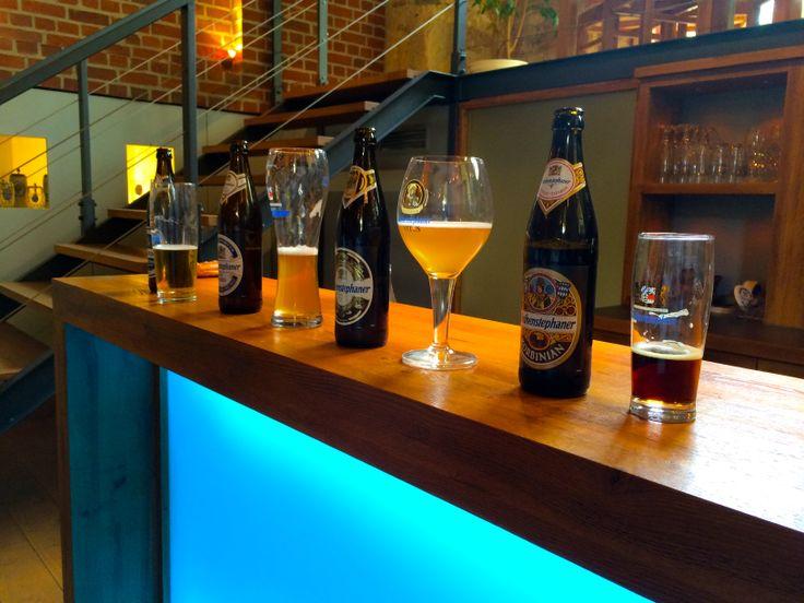 Beer tasting at Weihenstephan Brewery | Freising, Germany