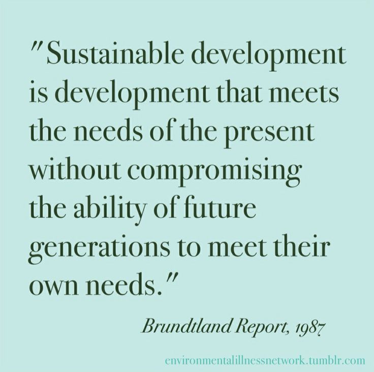 a vision of the future with sustainable development What is sustainable development this gap must be closed to ensure sustainable future development even as international to change the vision of the.