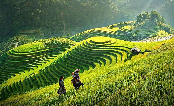 Le Vietnam est un pays plein de ressources du fait de sa diversité de paysages, de la richesse de sa culture et de l'accueil de ses habitants. Du Nord au Sud, vous serez émerveillés par ce pays qui cache de nombreux trésors.