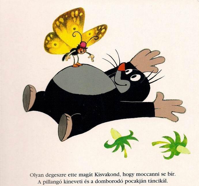 Kisvakond pillangoval