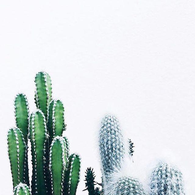 ✖️GREEN // Muse by Maike // Instagram: @musebymaike #MUSEBYMAIKE