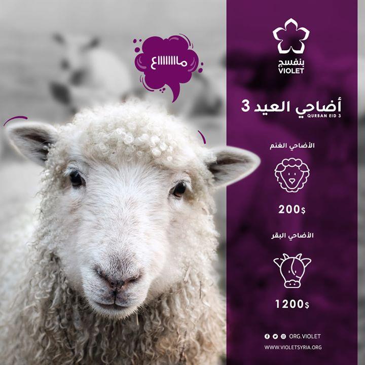 اجعل من أضحيتك بسمة على وجوه المحرومين في الشمال السوري للتبرع Https Ift Tt 2dowajl Make Your Gift A Smile On The Disadvanta Animals Qurban Violet