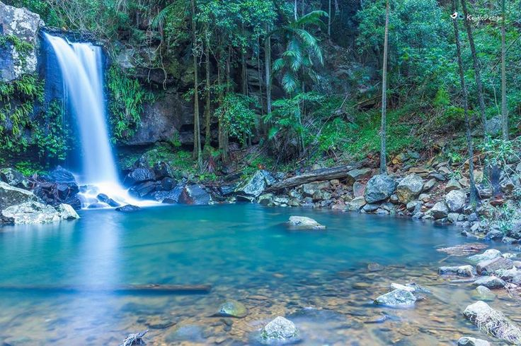 Curtis Fall, Mt. Tamborine, Gold Coast, Queensland