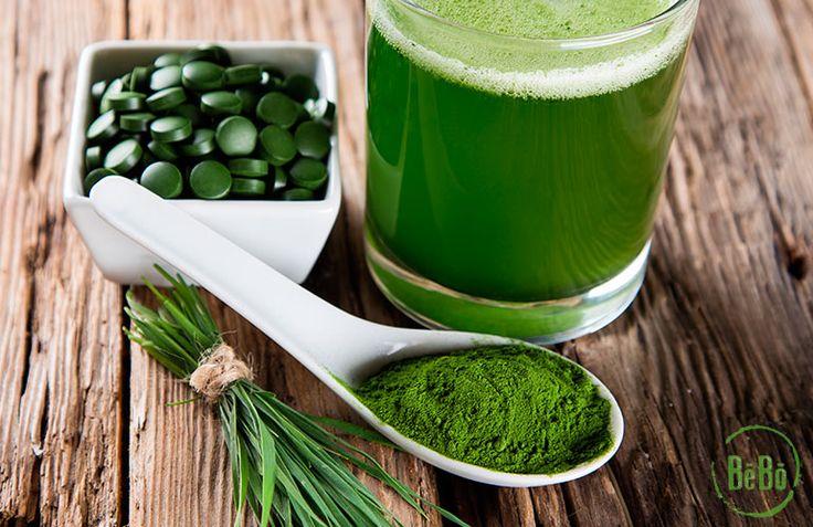 Comprar alga espirulina