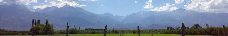 Been there: Bodega Familia Di Tommaso, Mendoza, Argentina