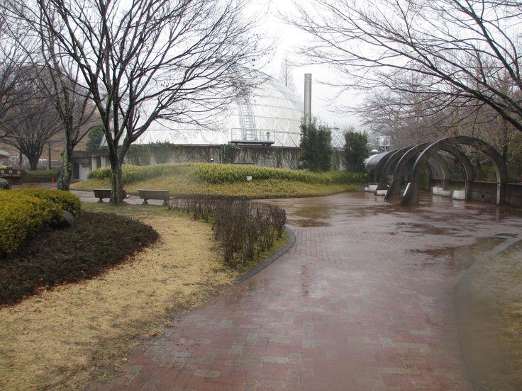 鞍ヶ池公園 ⑤植物園前