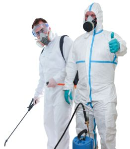 The best pest control measures