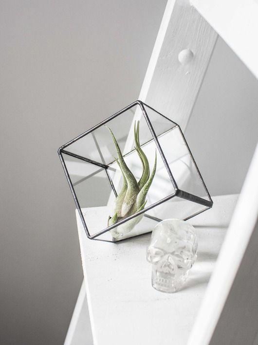 dodatki - doniczki i wazony-Minimalistyczne Terrarium