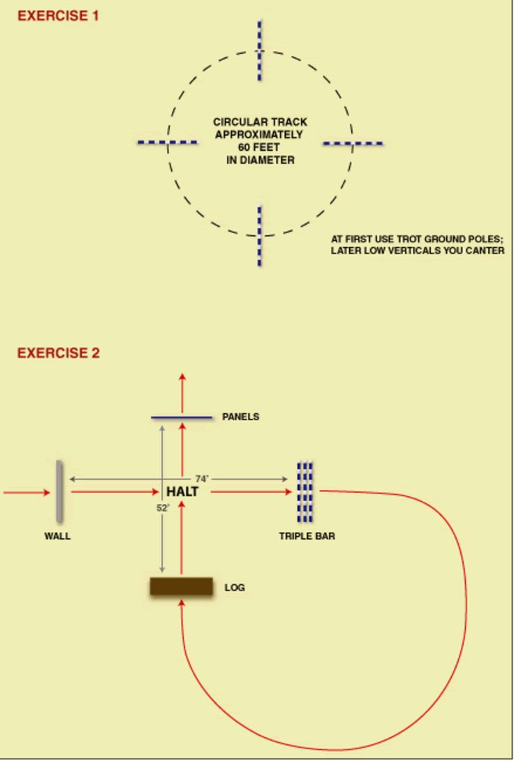 From a 2005 clinic with equitation and jumping expert George Morris, here are two exercises you can set up in your own ring.