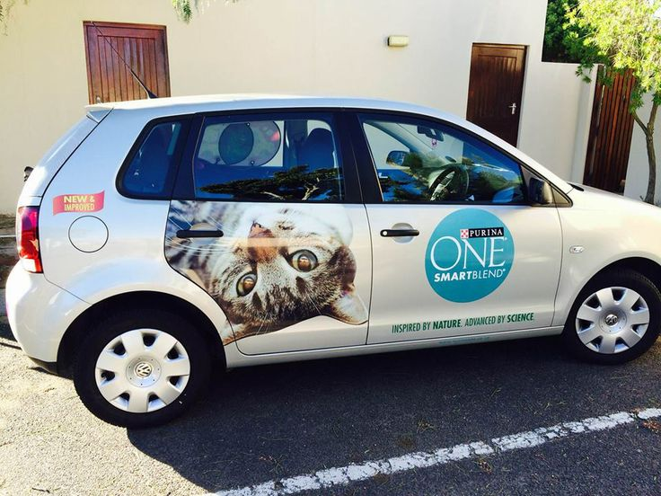 """From our brand ambassador Candice: """"Purina ONE South Africa with the help of Brandyourcar.com really did show me what food would be best for my cats."""""""