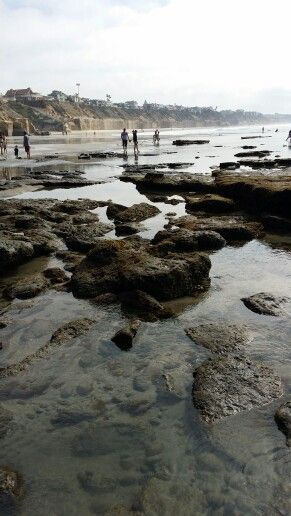 The Tidepools at Cardiff Beach