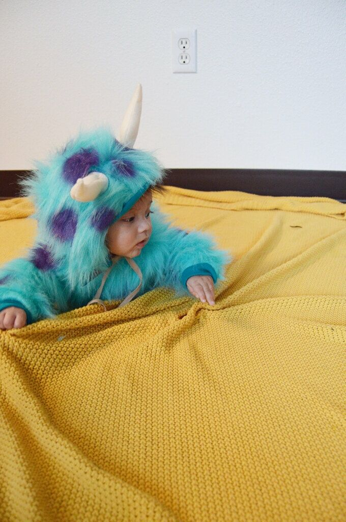 Handmade Sully Costume by BlossomandBloomKids on Etsy https://www.etsy.com/listing/467444088/handmade-sully-costume