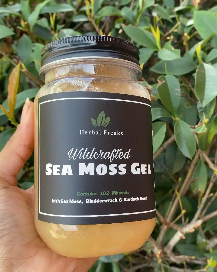 how to make sea moss gel with bladderwrack and burdock root
