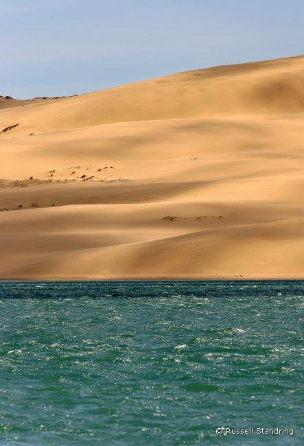 The view of the giant sand dune oppostite the village of Opononi in the Northland of New Zealand's North Island.