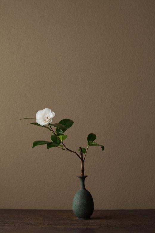 2012年4月8日(日) 清雅のうちに華やぎがあります。 花=御輪椿(ゴリンツバキ) 器=青銅王子形水瓶(六朝時代,229~589 AD.)Toshiro Kawase / Love the way this arrangement is balanced. It has so much movement.