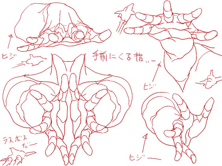 drawing art hands draw finger hand human Anatomy different knuckles reference tutorial references positions knuckle