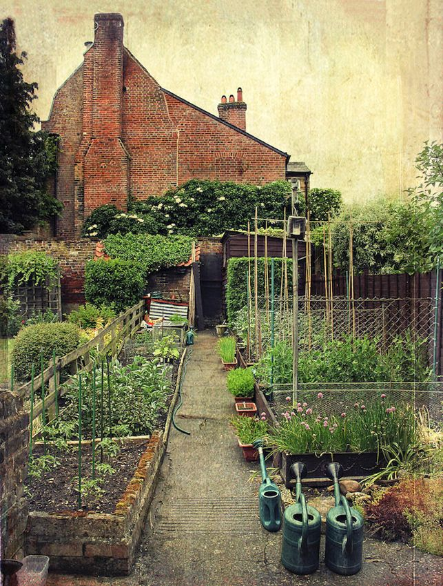 .: Garden Ideas, Garden Design, Gardens, Gardening, Vegetables Garden, Worth It, Kitchen Garden, Vegetable Garden