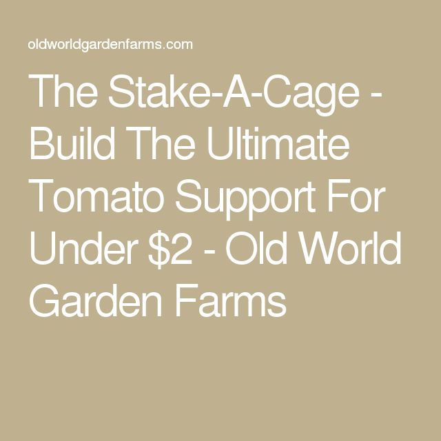 The Stake-A-Cage - Build The Ultimate Tomato Support For Under $2 - Old World Garden Farms