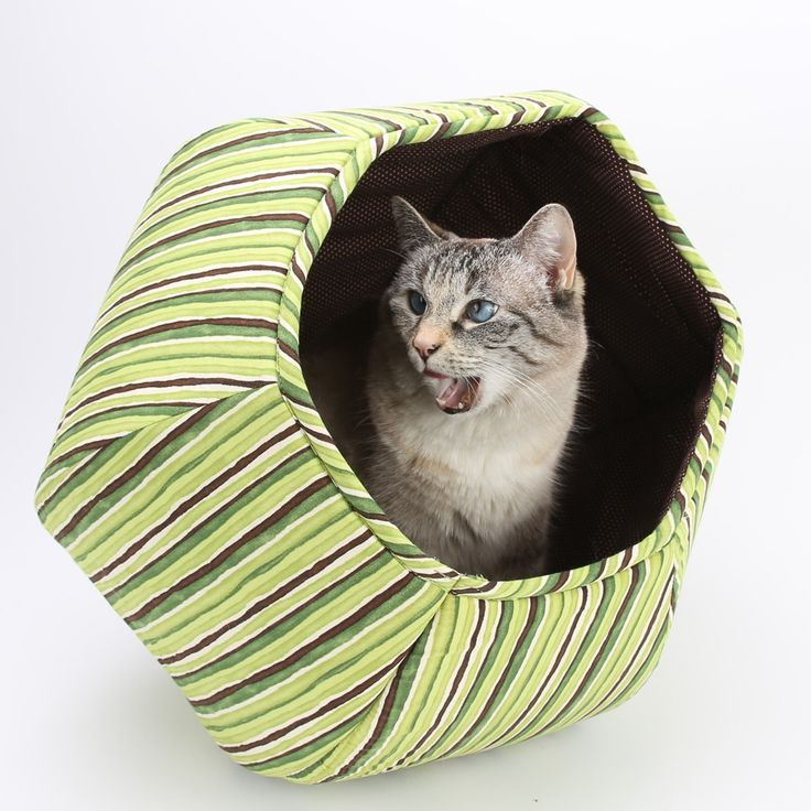 Cat Ball modern cat bed in green stripes