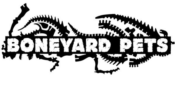 Boneyard Pets : 3D Dinosaur Skeleton Puzzles Made in USA