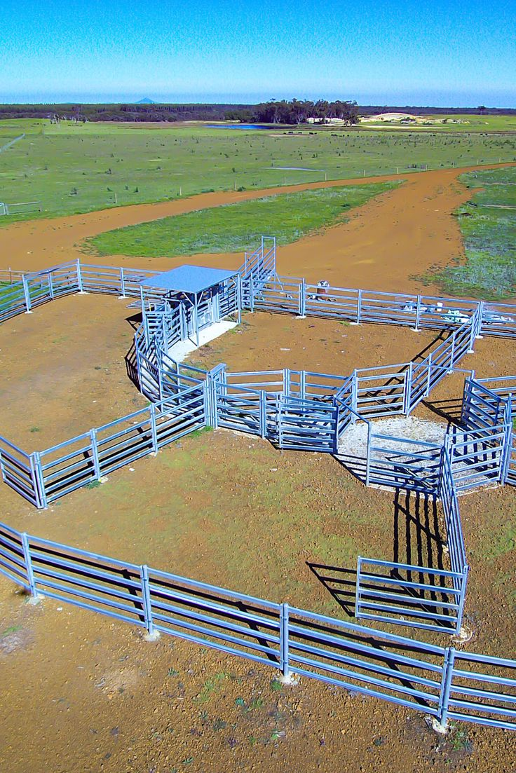 Permanent Cattle Yards To Hold 350 Head Australian Made