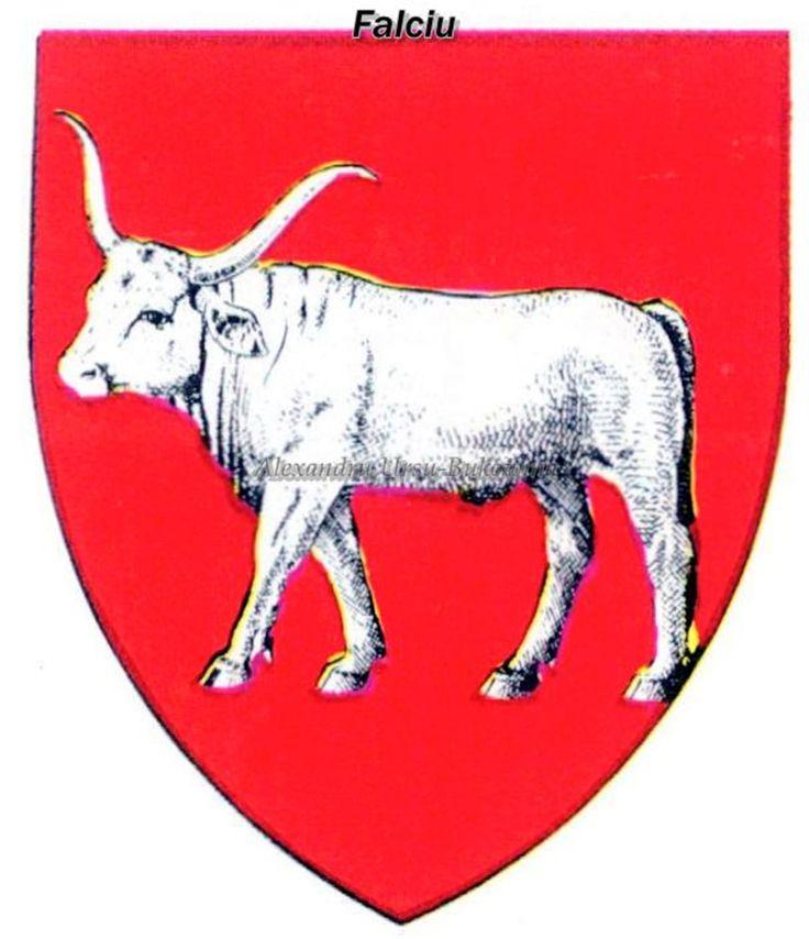 Ținutul Dunării. Județul Fălciu.