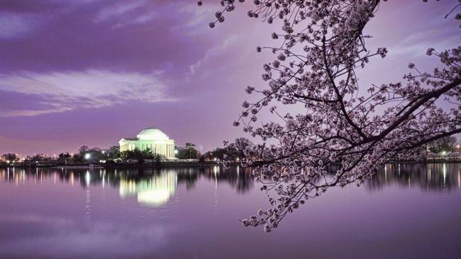 Beautiful DC