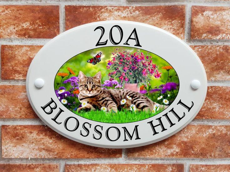 Cat printed house sign (code 003)