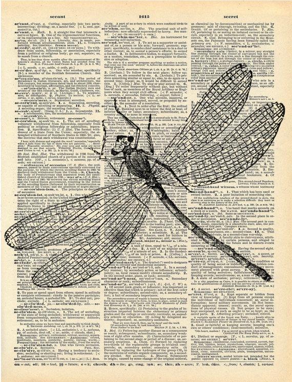 Dragonflies make me smile