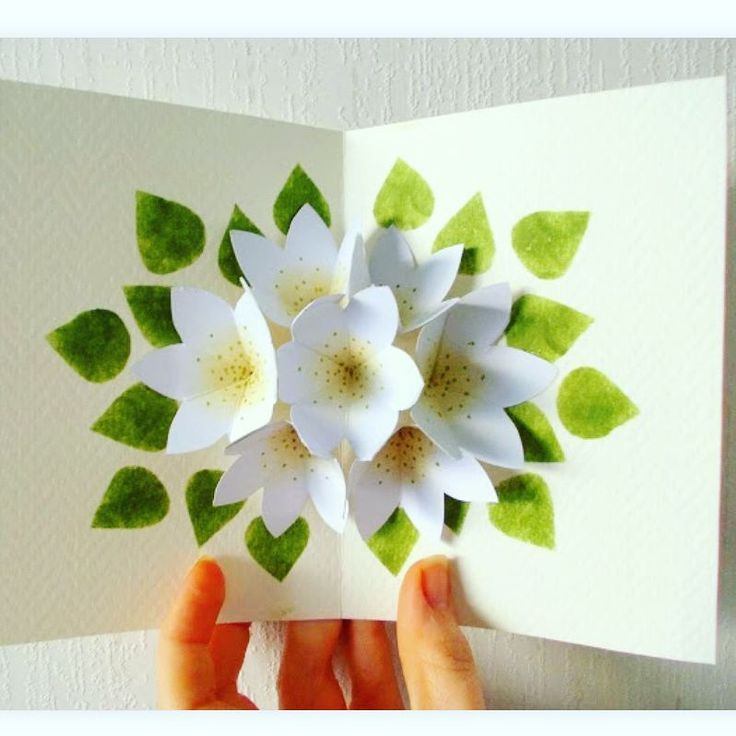Цветы 3 д открытки своими руками на день