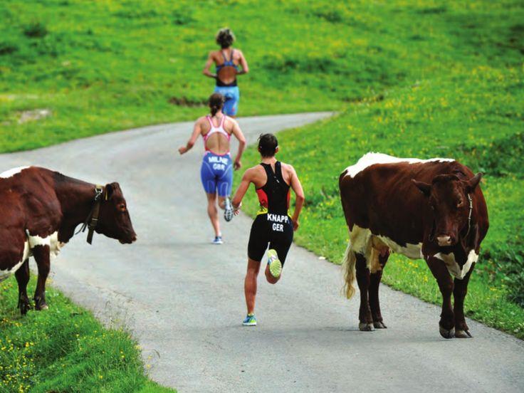 #triathlon #tri #SBR #triatlo #triatlón Photo Triathlete Europe by Janos Schmidt