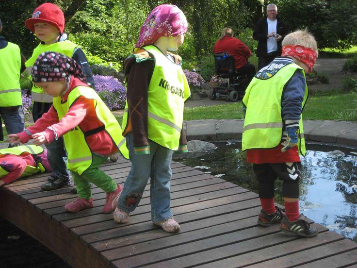 school children in the Botanical Gardens, Akureyri, Iceland
