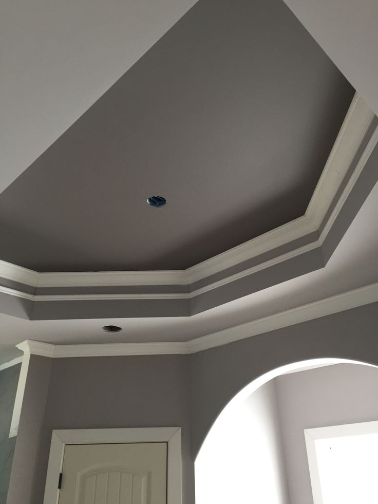 Master bath tray ceiling Sherwin Williams mink and proper