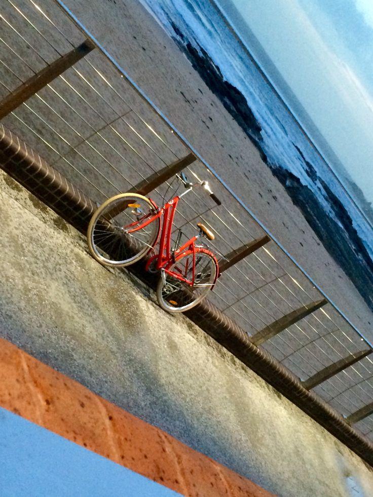 #wollongong #red #northwollongong # beach  #bike