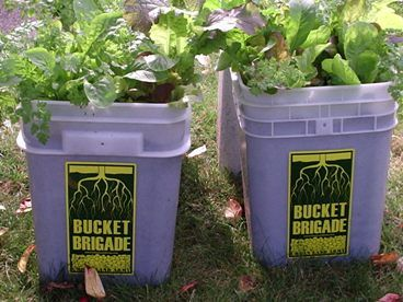 Urban Land Army · Bucket Brigade