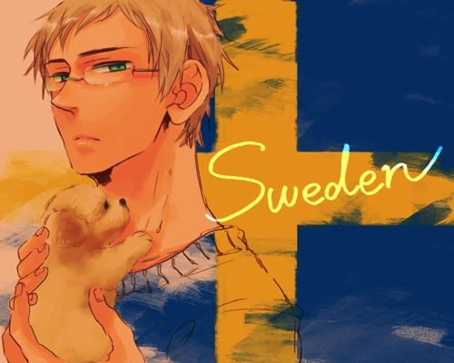 Nation's Flags Sweden Hetalia Omg! The puppy!!